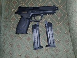 WE M&P big bird